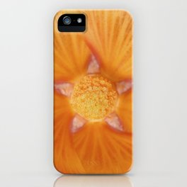 Pretty Holly iPhone Case