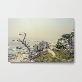 Ghost Tree II Metal Print