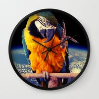 parrot Wall Clocks featuring Parrot by Cs025
