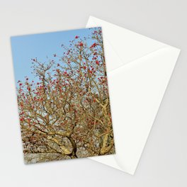 Flowering Coral Tree Red Flowers Stationery Cards