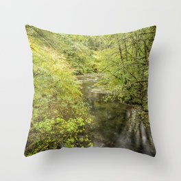 North Fork Silver Creek Throw Pillow