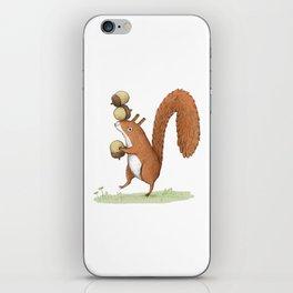 Squirrel With Acorns iPhone Skin
