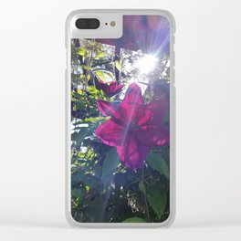 Pink Flower w/sunburst Clear iPhone Case