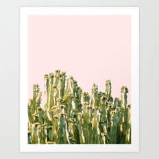 Cactus Blush #society6 #decor #buyart Art Print