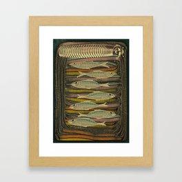 Serendipity / Herrings 1 Framed Art Print