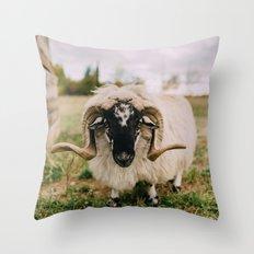 The Curious Sheep Throw Pillow