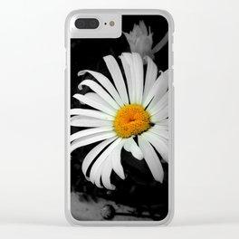Daisy Daisy Clear iPhone Case
