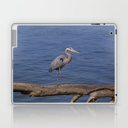Out on A Limb Laptop & iPad Skin