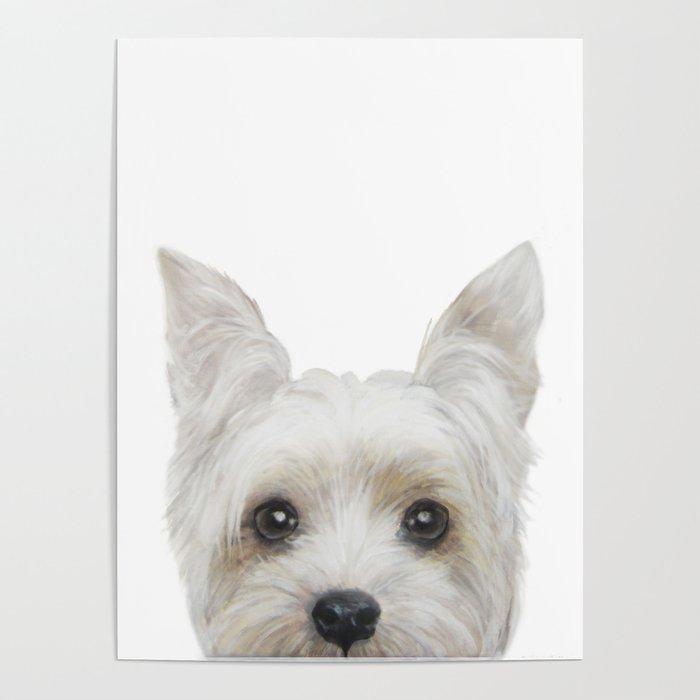 Yorkshire Terrier White Dog Illustration Original Painting Print Poster By Miartdesigncreation Society6