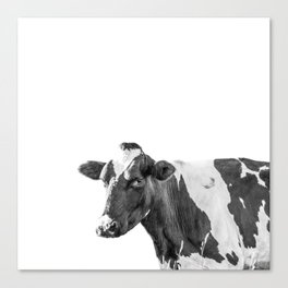 Cow Photography Animal Art | Minimalism black and white | black-and-white | Peek-a-boo Canvas Print