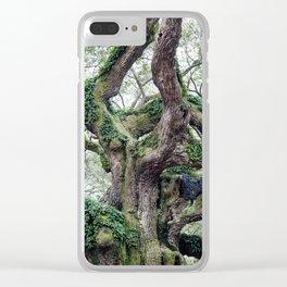 angel oak Clear iPhone Case
