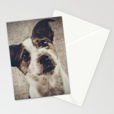 Jack Russel Terrier Stationery Cards