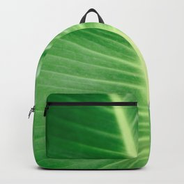 Palm CR Backpack