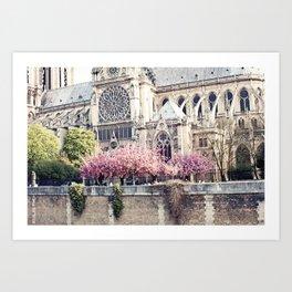 Cherry blossoms in Paris, Notre Dame Viwe Art Print
