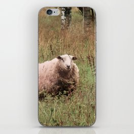 Woolly Sheep iPhone Skin