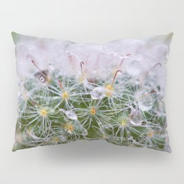Dew Covered Cactus Pillow Sham