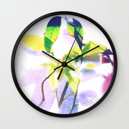 """""""Patterns of Nature"""" Houseplants behind Curtains in Backlight Wall Clock"""