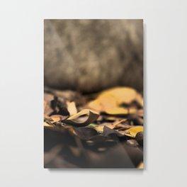 Autumn 01 Metal Print