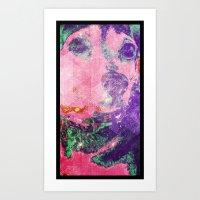 The Staring Dog Art Print