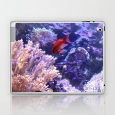 Lonely Fish Laptop & iPad Skin