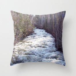Swollen Creek Runs Wild Throw Pillow