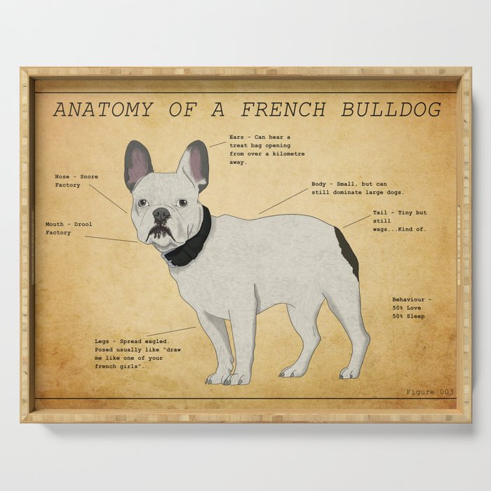 Anatomy of a French Bulldog Serving Tray