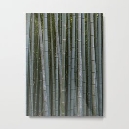 Bamboo Forest in Arashiyama Metal Print