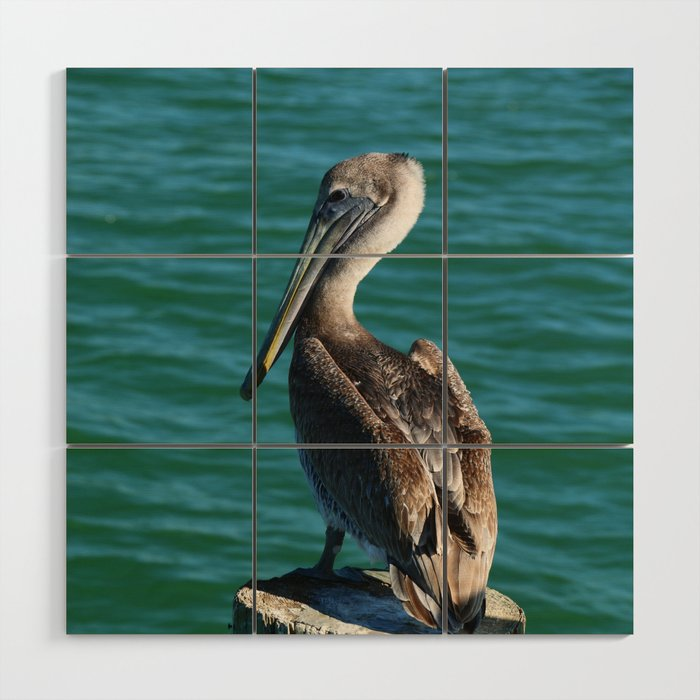 Pelican On A Pole Wood Wall Art by christianeschulze | Society6