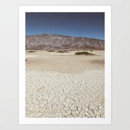 Clark Dry Lake  Art Print