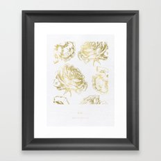 Gold Roses Framed Art Print