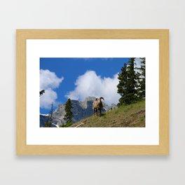 Ram Against Mountain Backdrop Framed Art Print