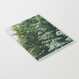 Winter Pine Tree Forest (Color) Notebook
