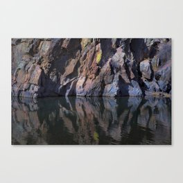 Color Reflected Canvas Print