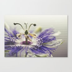 Full of Passion Canvas Print