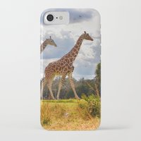 giraffes iPhone & iPod Cases featuring Giraffes by Photography by Terrance