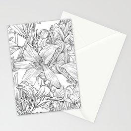Daylily Stationery Cards