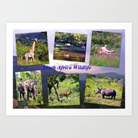south africa Art Prints featuring South Africa Wildlife by Art-Motiva