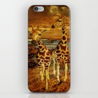 giraffes iPhone & iPod Skins featuring Giraffes by PineSinger