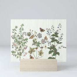 The fragility of living - botanical illustration Mini Art Print