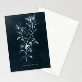 Cyanotype - Camphora Officinalis Stationery Cards