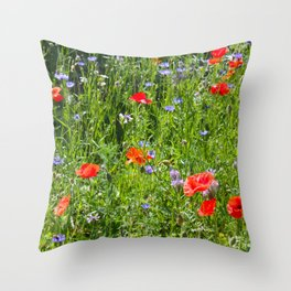 Spring time Throw Pillow
