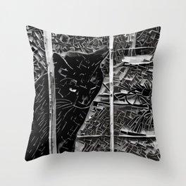 Street Cat XIX Throw Pillow