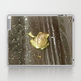 On the Climb Laptop & iPad Skin