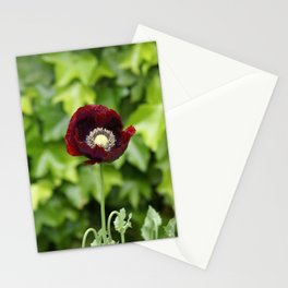 Opium Flower Stationery Cards