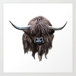 Scottish Highland Cow Art Print