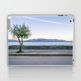 Sucuraj 1.9 Laptop & iPad Skin