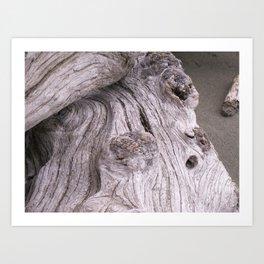 zen driftwood 2 Art Print