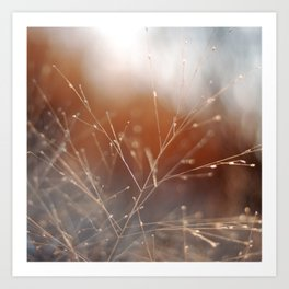Nature Sparkles Art Print