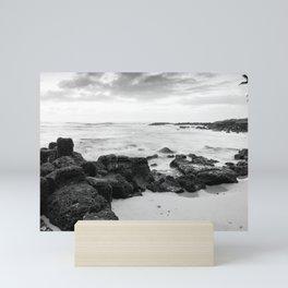 Dramatic coastline at Poipu beach in Kauai, Hawaii Mini Art Print