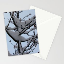 Snow Wings Stationery Cards
